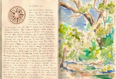 A diary kept whilst trevelling in the Eastern Transvaal, South Africa