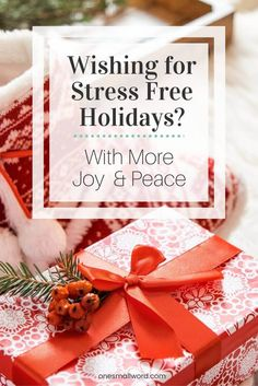 The new book Stress Free Holidays: Bring Back Joy & Peace! shows us how we can have the kind of holidays we really want! Less Stress, More Joy! via @onesmallword