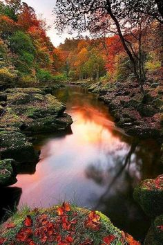 The Strid, Bolton Abbey, Yorkshire Dales, UK nature eco beautiful places landscape travel natura peisaj Foto Nature, All Nature, Amazing Nature, Beauty Of Nature, Green Nature, Beautiful World, Beautiful Places, Beautiful Pictures, Beautiful Scenery