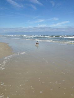 Atlantic Ocean at New Smyrna Beach