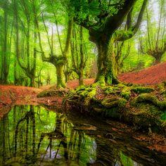 OTZARRETA REFLECTIONS by Lluis  de Haro Sanchez - Photo 153294171 / 500px