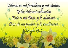 Exodo 15.2 Concrete And Abstract Nouns, Biblical Quotes, Son Of God, Projects To Try, Prayers, Words, Google, Walking, Bible