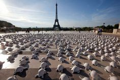 Eiffel Tower Turtles of War Installation by French Artist Rachid Khimoune Paris Eiffel Tower, Tour Eiffel, Armistice Day, Flanders Field, Lest We Forget, Remembrance Day, French Artists, World War I, Installation Art