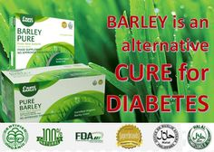 Did you know that Barley is an alternative cure for diabetes