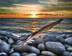 Icarus undone by petervanallen, via Flickr