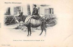 Biarritz Riding A Donkey in France Antique Postcard L462 | eBay