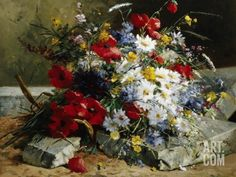 Daisies, Cornflowers and Poppies Photographic Print by Eugene Henri Cauchois at Art.com
