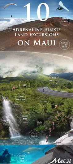 Top 10 Adrenaline Junkie Land Excursions on #Maui