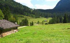 Schwarzbach Alm