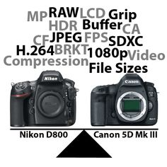 Priority differences between Canon 5D MkIII and Nikon D800