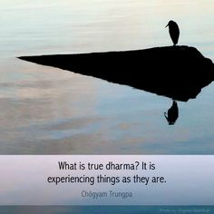 """Chogyam Trungpa: """"What is true dharma?  It is experiencing things as they are."""" ..*"""