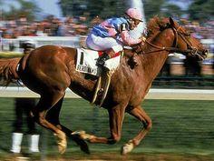 Ferdinand. 1986 Kentucky Derby winner. Jockey: Bill Shoemaker. Winning time: 2:02 4/5