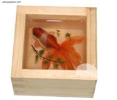 D Painting Of Goldfish In Resin Water Inspired By Riusuke - Incredible 3d goldfish drawings using resin