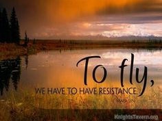 To fly we have to have resistance. -Maya Lin Quote Wallpaper