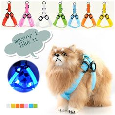 Find More Dog Collars & Leads Information about Nylon LED Pet Collar with LED Lights Dog Puppy Mascotas Coleira Para Cachorro Belt Harness Leash Rope LED Pet Dog Collar,High Quality led lighting flood light,China led rgb rope light Suppliers, Cheap led rgb strip waterproof from Shenzhen Raysflt Technology Co.,Ltd on Aliexpress.com