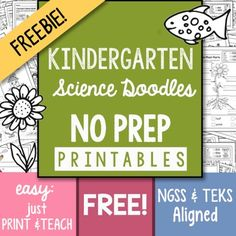 I worry that Science gets overlooked in the early grades and that is why I offer this 13 page FREEBIE that is part of my:200+ Page NO PREP Science Kindergarten Printables packed with engaging ways to teach Science! Unigue drawings that help students understand concepts, TEKS and NGSS aligned.