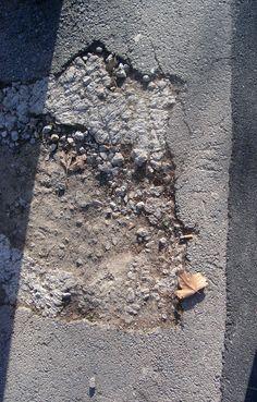 Sota el ciment