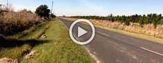 Este ciclista estaba solo en tierra de nadie. Ahora mira lo que se encontró sentado sobre sus pies #viral