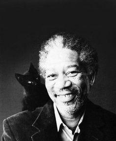 black cat and Morgan Freeman