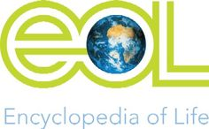 The Encyclopedia of Life, http://eol.org/, is an open access, collaborative, online encyclopedia of  the world's living creatures launched in 2007 by a collaborative international group of scientists, research institutions and museums and is an ongoing project which welcomes participants.  Originally targeted for scientists, it has recently been reworked for the general public. via solutions-site.org and http://tinyurl.com/88b373a   #EOL #Science