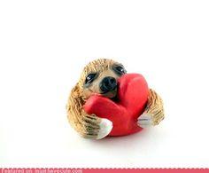 Awww a Sloth!