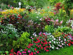 """Low-growing annuals form the edging and lower """"story"""" of this multi-tiered landscape in RMSer chefboston's planting beds. - Beautiful Summer Gardens on HGTV Tiered Landscape, Landscape Design, Garden Design, Summer Landscape, Beautiful Gardens, Beautiful Flowers, Prettiest Flowers, Beautiful Beautiful, Year Round Flowers"""