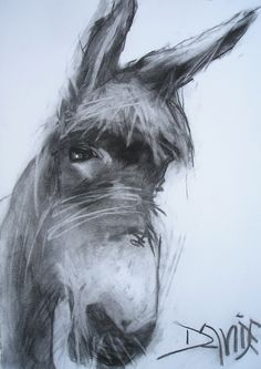 Monty by Valerie Davide