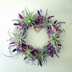 air plant wreath // plum // tillandsia by by peacocktaco on Etsy, $175.00