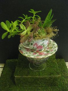 images about Upcycled Plant Containers on Pinterest