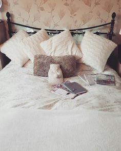 Blogging space ☆ Instagram @theyorkshirehare ☆ blog http://theyorkshirehare.weebly.com/ ☆