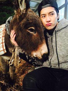 Jackson and his donkey michael jackson