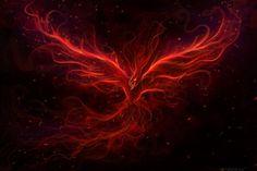 The Phoenix Rise