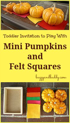 Halloween Invitation to Play with Mini Pumpkins & Felt Squares~ Buggy and Buddy