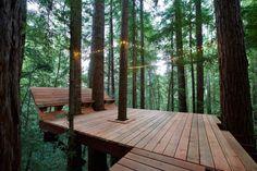 of friends build a DIY cabin retreat, complete with suspended tree decks. Friends build a DIY cabin retreat, complete with suspended tree decks Tree House Deck, Tree Deck, Tree House Plans, Modern Tree House, Cabine Diy, Deck Around Trees, Glamping, Platform Deck, Timber Cabin