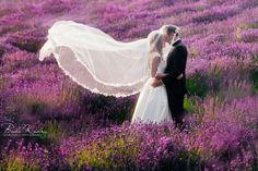 Sesja plenerowa - Białe Kadry  3nature #wedding #photoshoot #lavender #sesja zdjęciowa #lawenda #zdjęciaślubne #bride #groom