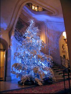 Unique Christmas Trees, French Christmas, Christmas Fairy, Blue Christmas, Holiday Tree, Christmas Pictures, Christmas Wedding, Beautiful Christmas, Winter Christmas