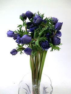 お花の仲卸 有限会社フレッシュフラワーサービス
