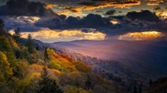 Everything You Need To Know Before Hiking in the Smoky Mountains