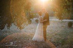 Marilena si Bogdan - Nunta la Hotel Mercur, Galati Groom, Bride, Wedding Dresses, Fashion, Wedding Bride, Bride Dresses, Moda, Bridal Gowns, Alon Livne Wedding Dresses