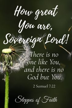 #Lord ##God #king #sovereign #power #majesty#control #great #worthy #heisworthy #praise #worship #faith #christianfaith #believe #bibleverses #scripture #truth #bible #biblequotes #quotes #worshipquotes #dailydevotional #dandelion #flowers #pollen #wind #nature #beautiful Scripture Pictures, Bible Verses Quotes, Bible Scriptures, Prayer Verses, God Prayer, Worship Quotes, Favorite Bible Verses, Good Good Father, Religious Quotes
