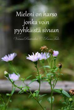 RunoTalon voimapuutarha: Voimaruno & voimakortit vko 48: Sydämesi avaruus