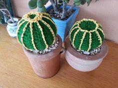Tutorial crochet/ganchillo, cactus bola. - YouTube