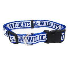 Kentucky Wildcats Collar