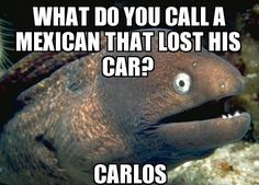bad joke eel mexican
