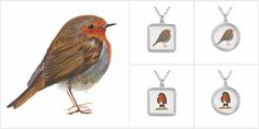 Red Robin Bird Gifts and Jewellery https://plus.google.com/+AlisonLangridgeSussex/posts/ay3MRB6zAdU