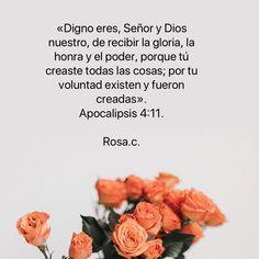 140 Ideas De Solo Para Dios Dios Bastate Mi Gracia Lamentaciones 3 22