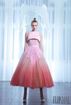 Nicolas Jebran Frühjahr/Sommer 2015 - Couture - http://de.flip-zone.com/nicolas-jebran-5749