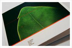 Ubik - Circadian Rhythm, Sleep Disorder | CD Disorders, Plant Leaves, Sleep