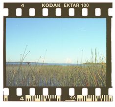 How To Clean Negative Film With Isoporpyl Alcohol Before Scanning Film Camera 35mm, Kodak Film, Instagram Frame, Instagram Story, Polaroid Frame, Polaroids, Old School Film, Kodak Ektar, Photo Negative