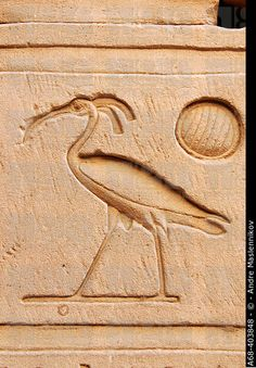 Stone relief of the Sacred Bennu Bird at the temple of Horus in Edfu. Egyptian Symbols, Ancient Egyptian Art, Ancient Aliens, Ancient History, Egyptian Hieroglyphs, Ancient Tomb, Ancient Artifacts, Temples, Empire Romain